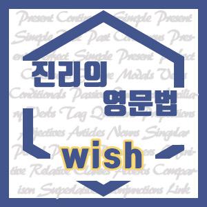 [진리의 영문법] wish (과거시제, 과거완료, would, to 부정사, hope)